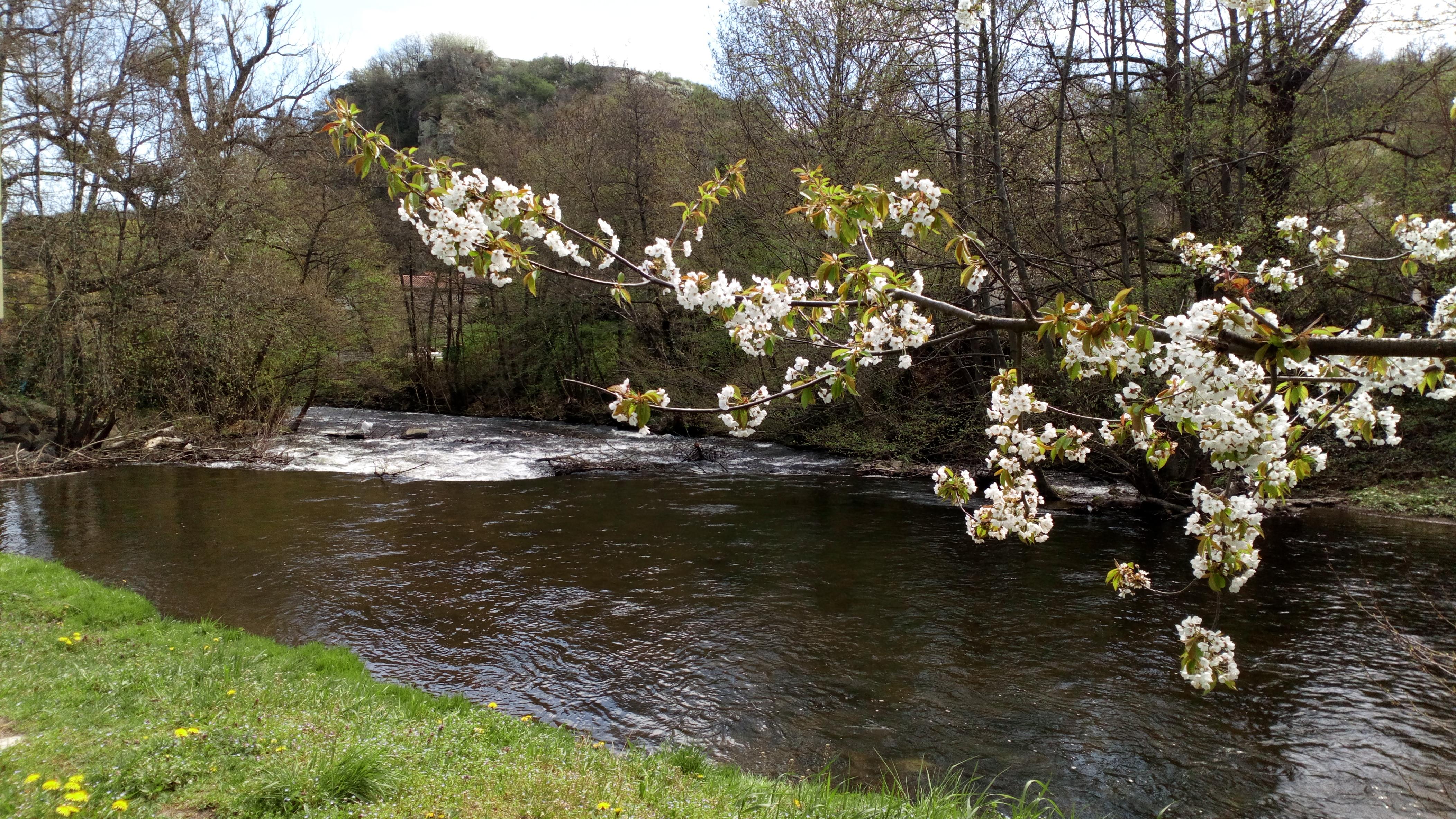 Rivière-la-couze-pavin-lamaisondemika